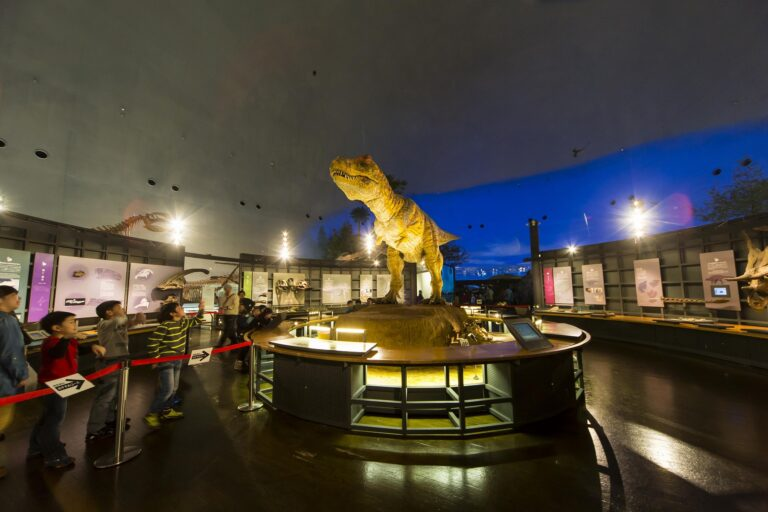 恐竜博物館の見どころ 動くティラノサウルス