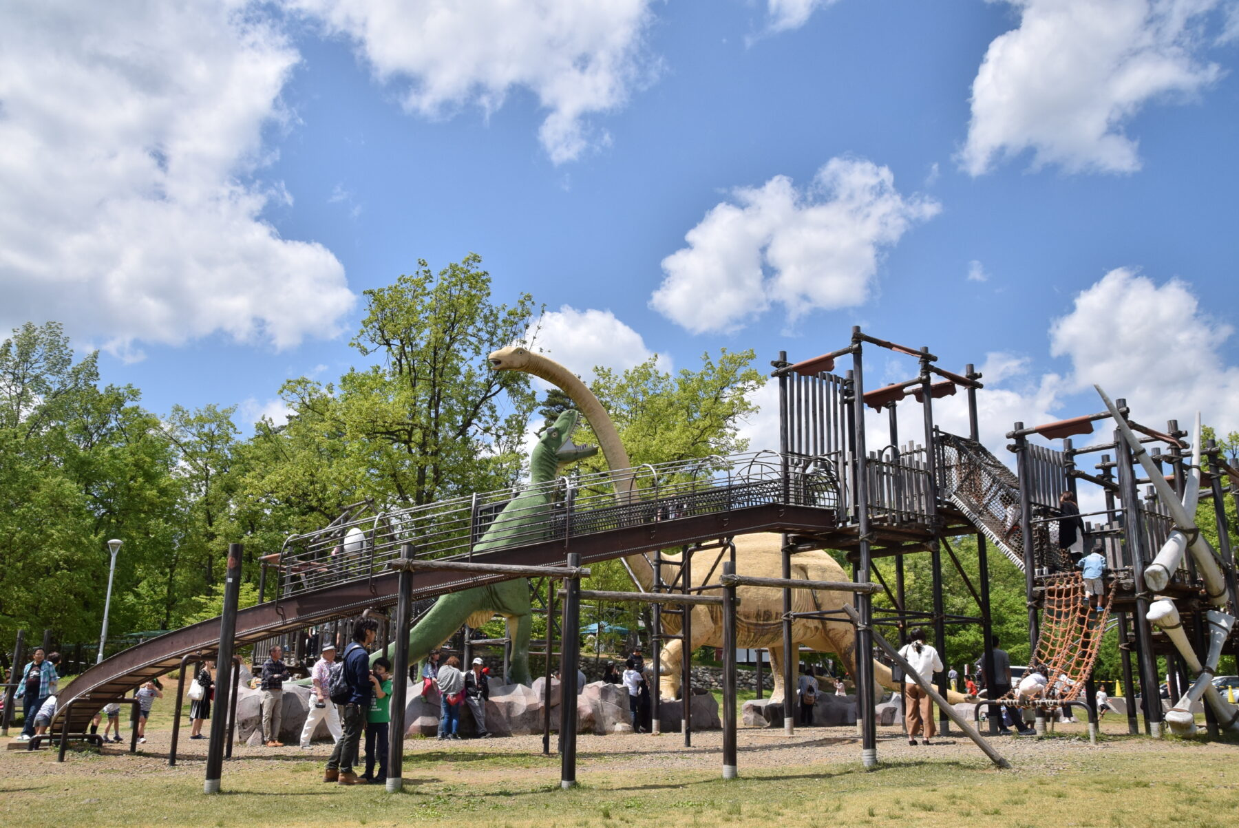恐竜博物館周辺の見どころ ティラノサウルス広場