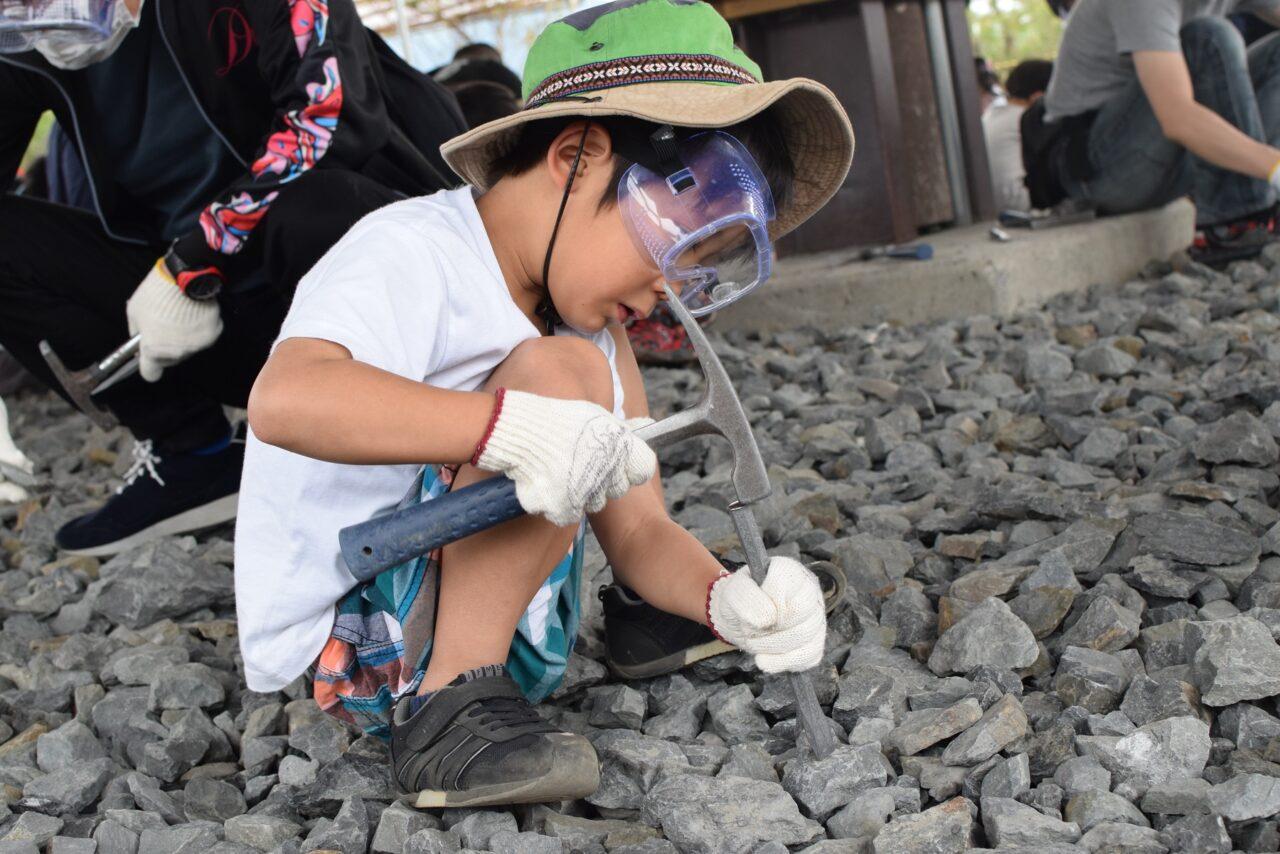 福井県立恐竜博物館 化石発掘体験