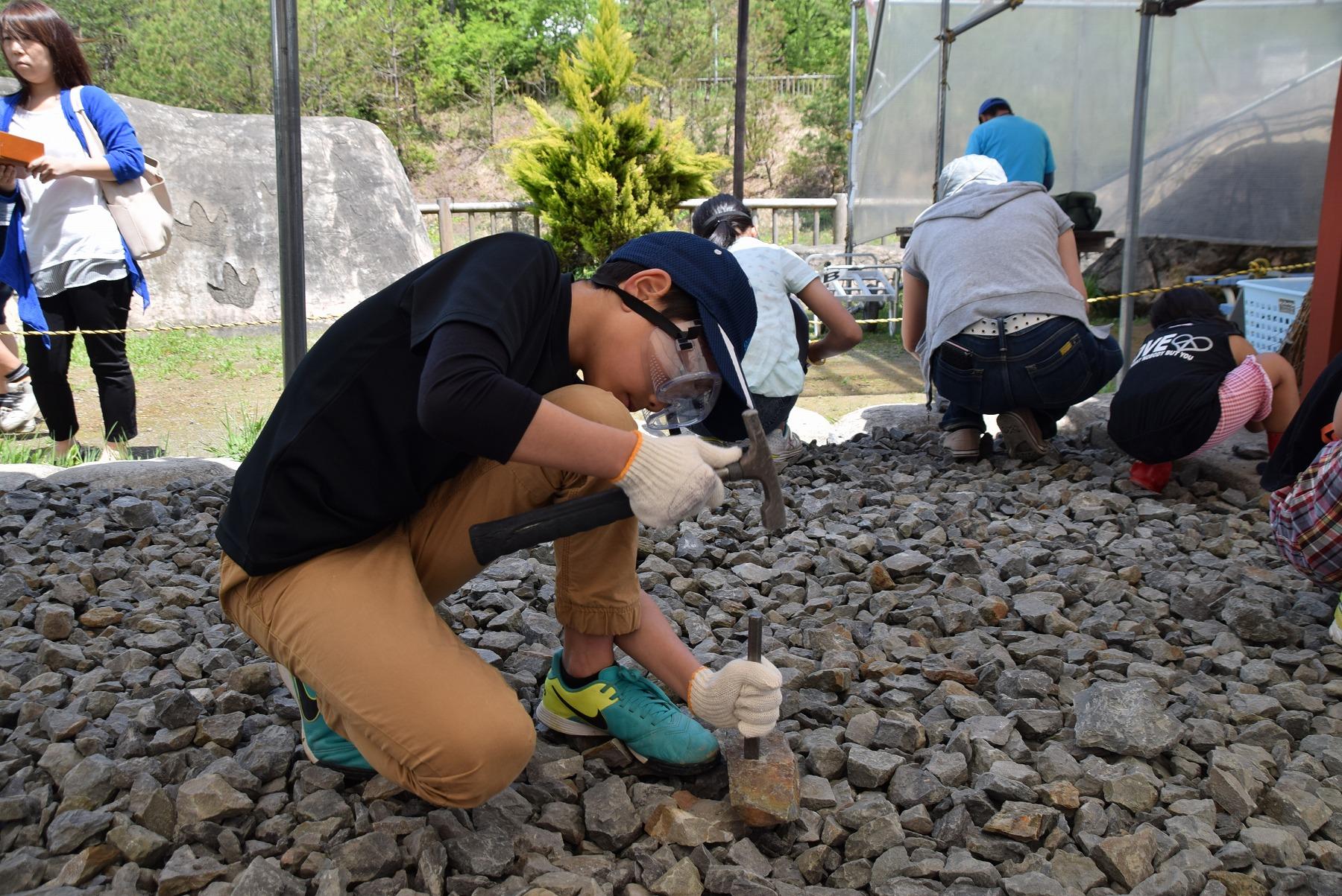恐竜博物館の見どころ 化石発掘体験