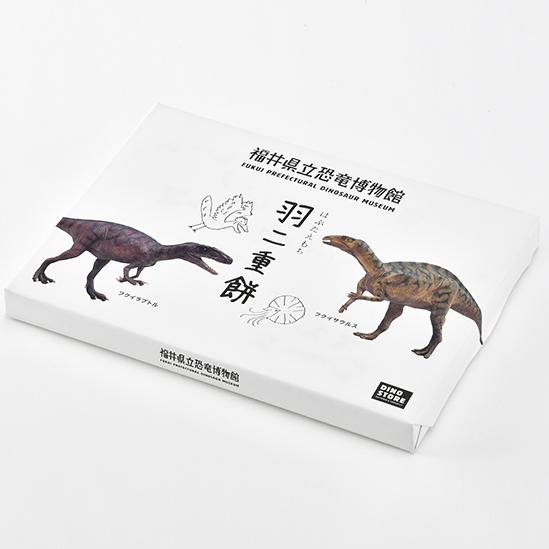 福井県立恐竜博物館SINO STOREディノストアお土産