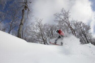 関西スキー場ランキング、4冠達成!関西でダントツ人気のスキー場とは?