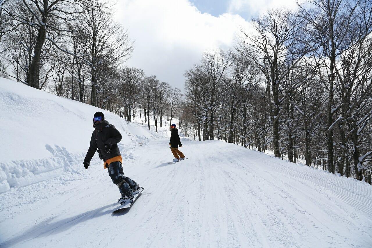 関西おすすめスキー場林道コース
